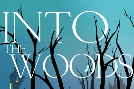 Operativo - Into the Woods