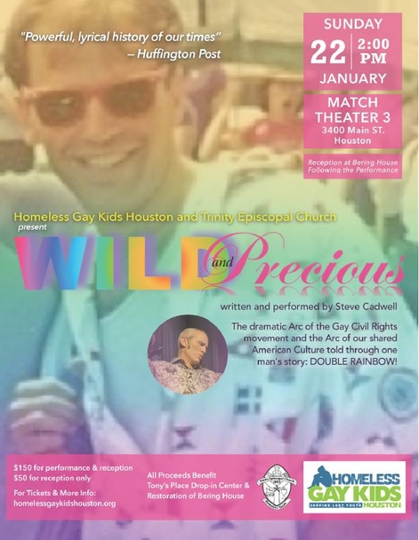 Homeless Gay Kids Houston - Wild and Precious Poster