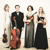 Axiom Quartet - Possibility