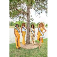 Houston Caribbean Queen Pageant 2017