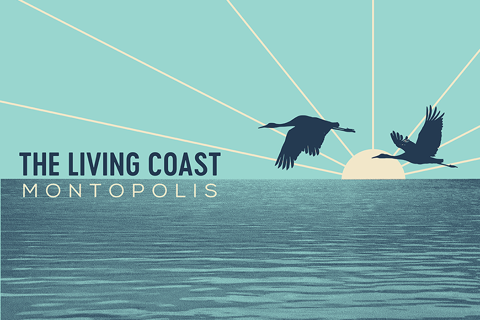 Montopolis - The Living Coast