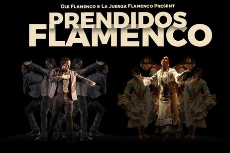 Ole Flamenco - Prendidos Flamenco
