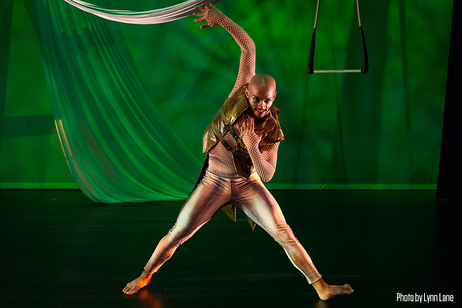 Open Dance Project - The Wizard of OZ