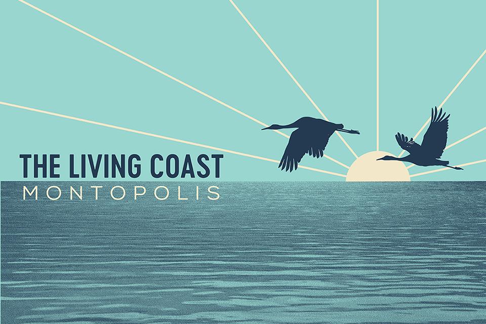 Montopolis - The Living Coast