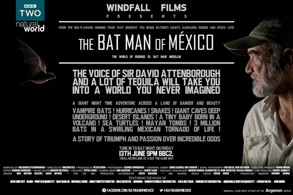 FotoFest - Bat Man of Mexico