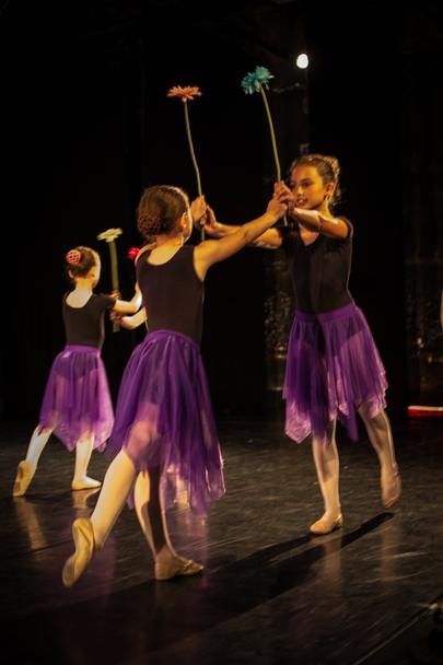 Hunter Dance Center - Hunter Dance Center Recital 2016 - 2