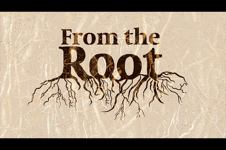 TRUTH Project - From the Root