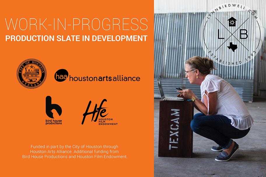 Houston Film Endowment - Work In Progress