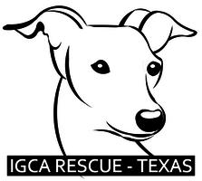 Italian Greyhound Rescue Foundation - Logo